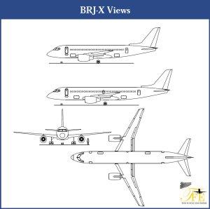 BRJ-X