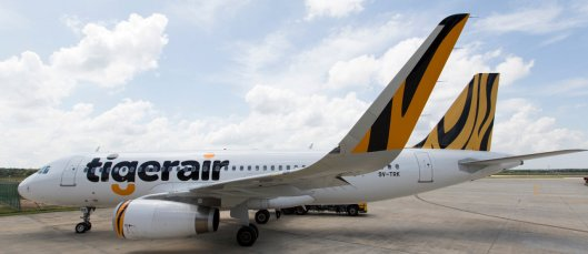 TigerAir_Shark